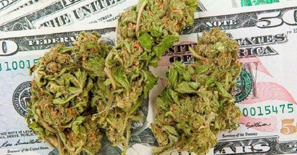 How much money is there in the marijuana market