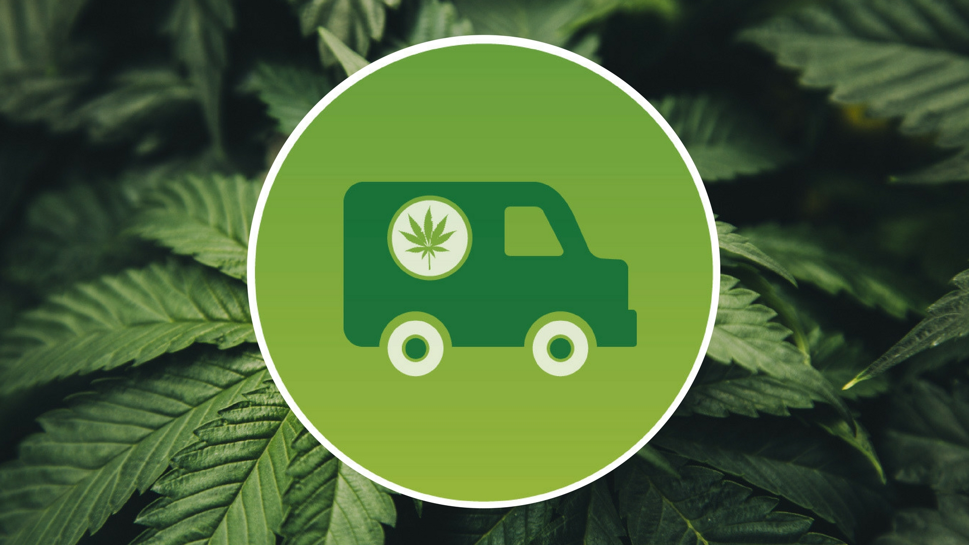 How to Start a Marijuana Delivery Service in Washington D.C.