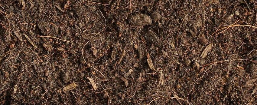 How to make average soil better