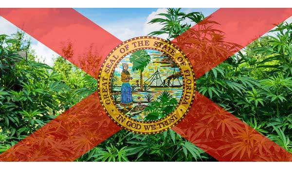 How to start a commercial grow operation in Florida