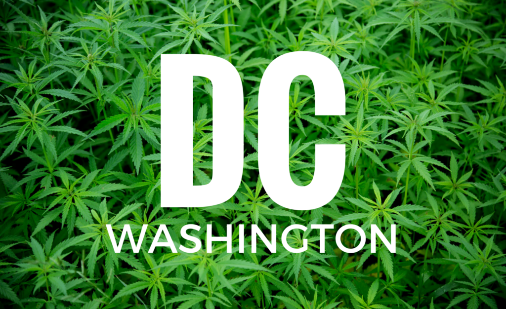 How to start a commercial grow operation in Washington, D.C.
