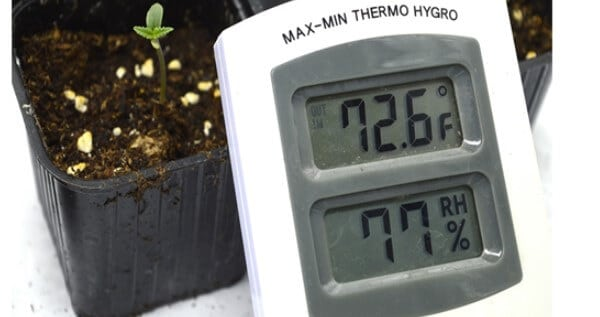 Humidity while growing