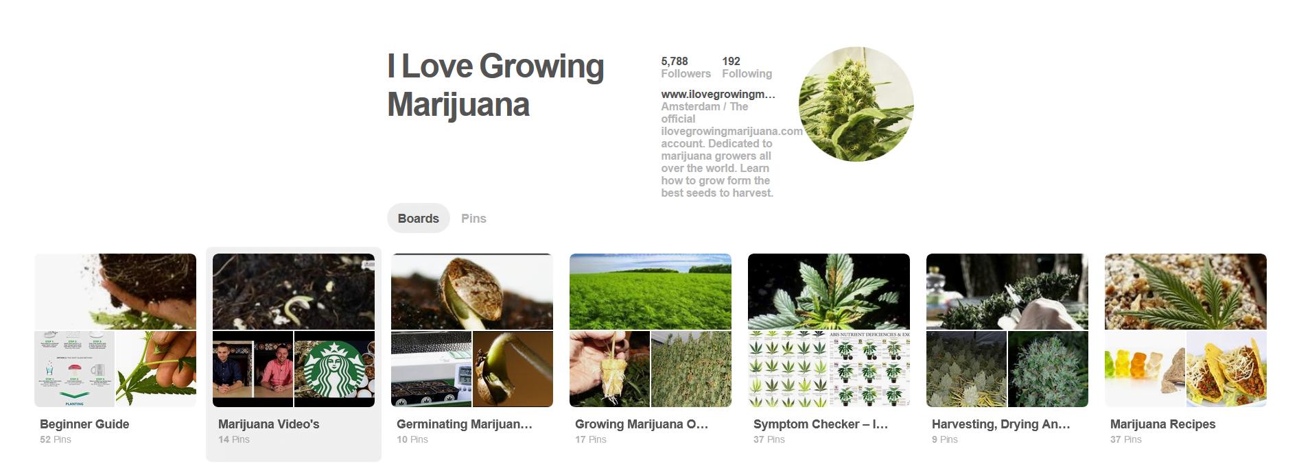 I Love Growing Marijuana Pinterest
