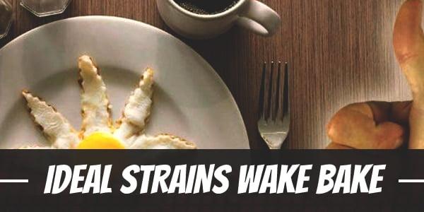 Ideal Strains Wake Bake