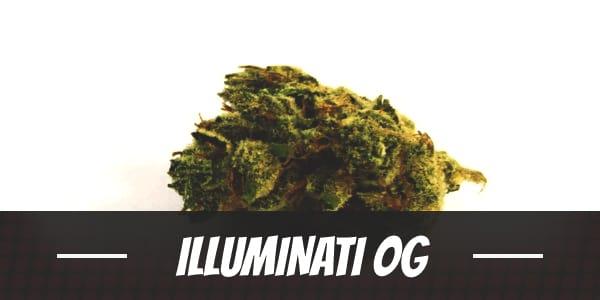 Illuminati OG
