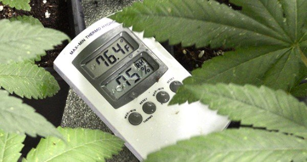 Optimize your plants' environment in every stage of growth