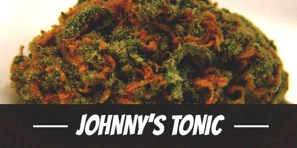 Johnny's Tonic