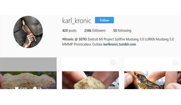 Karl Kronic