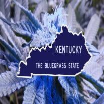 Marijuana Laws in Kentucky