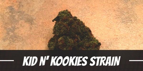Kid N' Kookies Strain