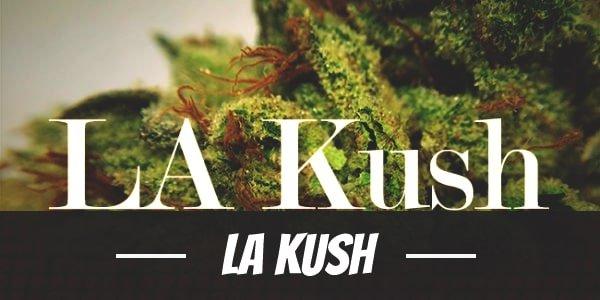 LA Kush
