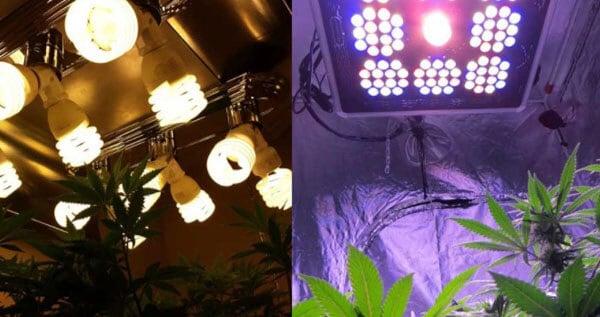LED lights vs. other lights