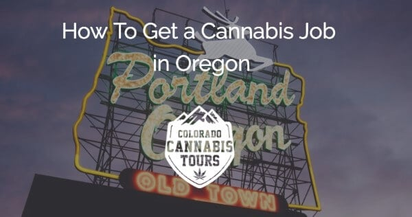 Legal requirements to become a trimmer or budtender in Oregon