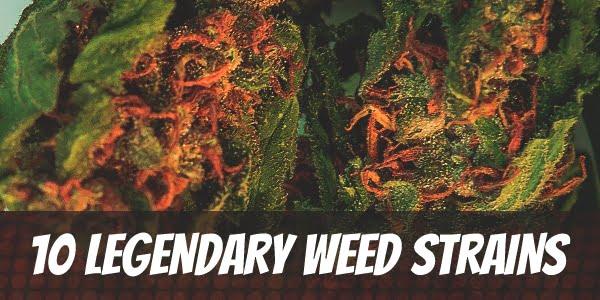 Legendary Weed Strains