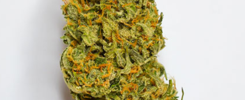 Lime Skunk Effects
