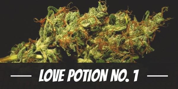 Love Potion No. 1