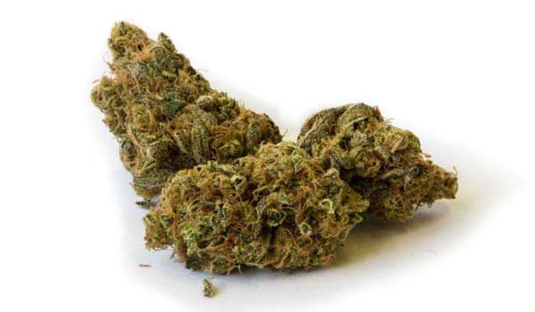 Madcow Strain Medical
