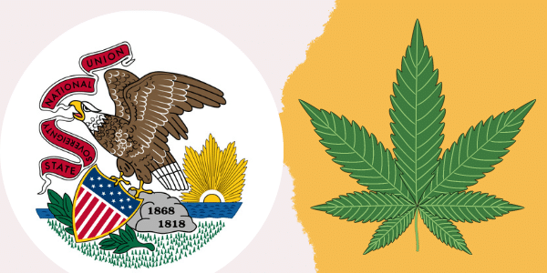 Marijuana Commercial Grow Operation In Illinois