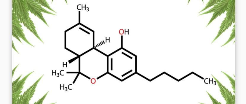 Marijuana DNA