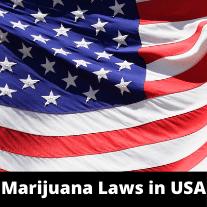 Marijuana-Laws-In-USA