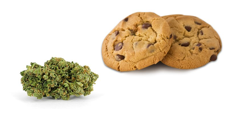 Cannabis chocolate chip cookies recipe