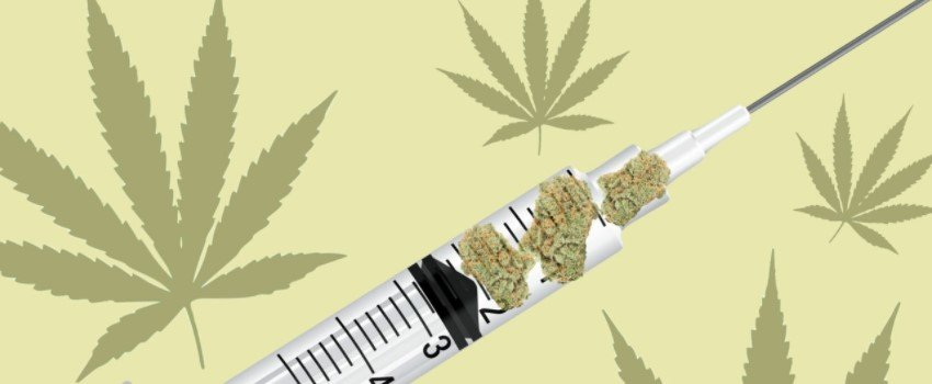 Marijuana for Medicine Temporarily Rebounds