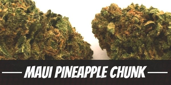 Maui Pineapple Chunk