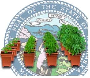 Nebraska growing tips