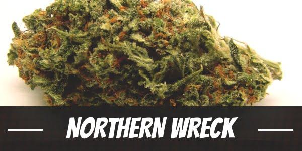 Northern Wreck