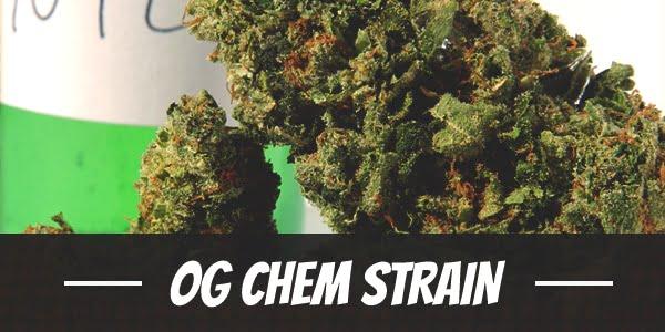 OG Chem Strain