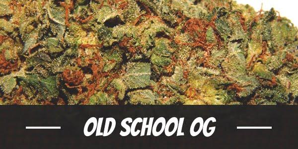 Old School OG