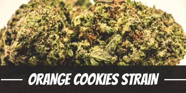 Orange Cookies Strain