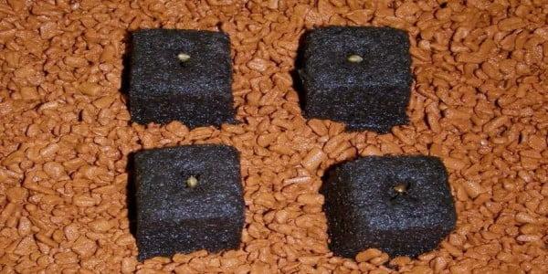 Peat plugs