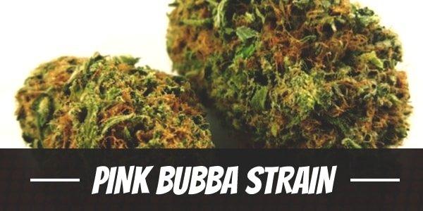 Pink Bubba Strain