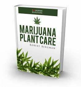 Marijuana Plant Care E-book