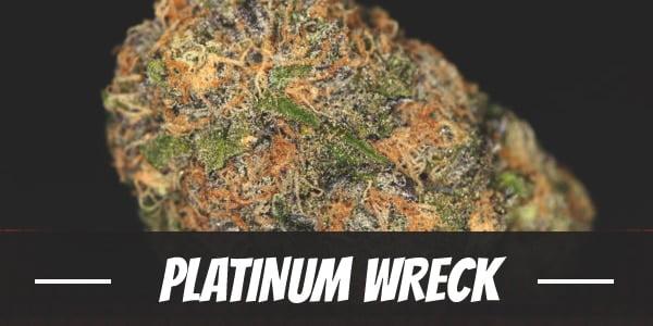 Platinum Wreck