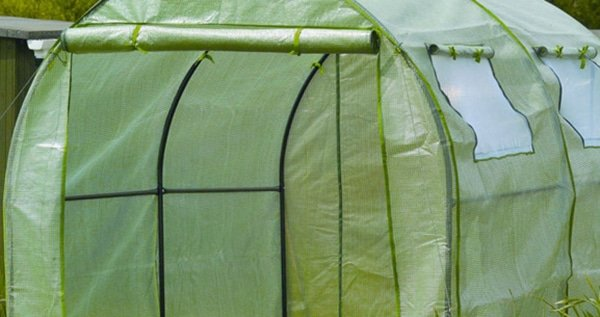 Polytunnel to grow weed