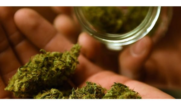 Possessing Marijuana California