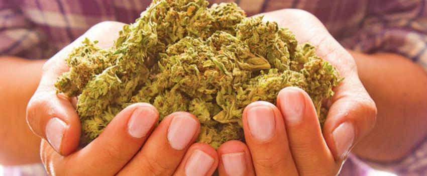 Possessing_Marijuana