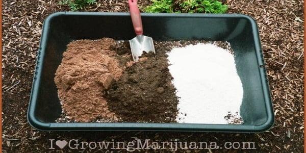 Soil Potting Mix