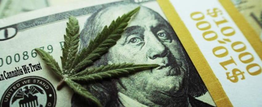 Profits of the North Dakota cannabis industry