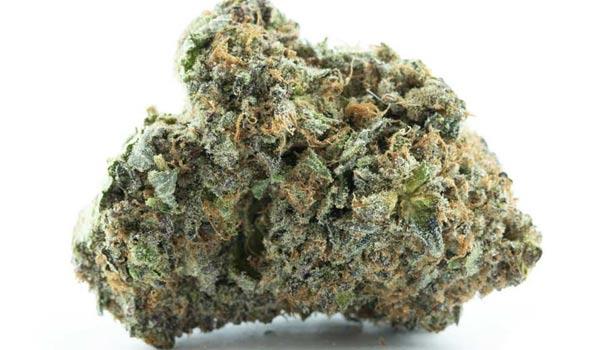 Purple Bubba Strain Medical