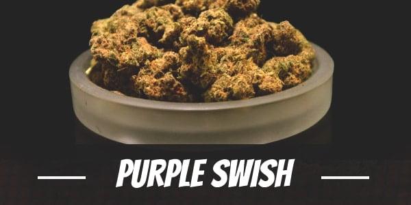 Purple Swish