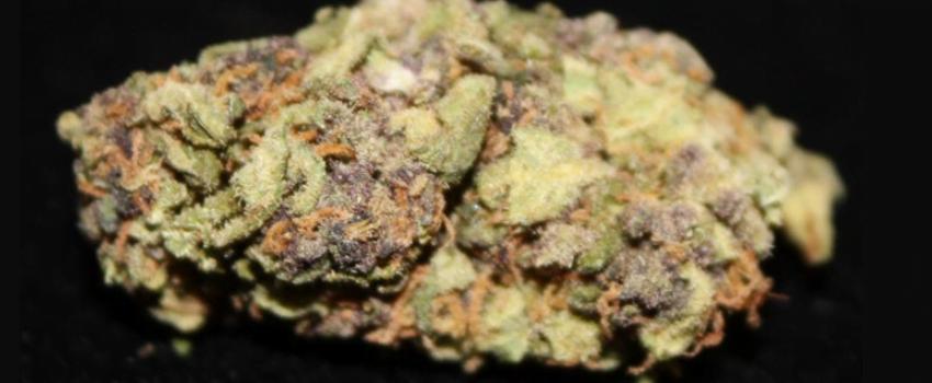 Purple Tonic Effects