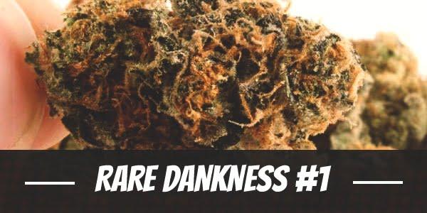 Rare Dankness #1
