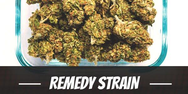 Remedy Strain