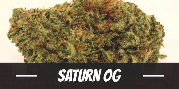 Saturn OG