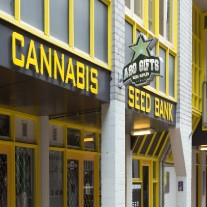 Seed Banks that Ship to the U.S.A.