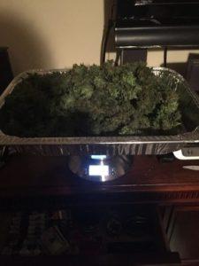 523 grams