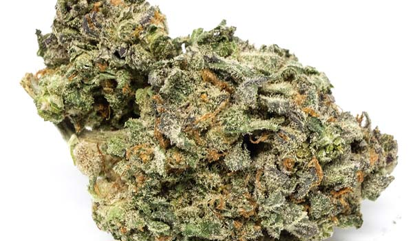 Shishkaberry Strain Medical